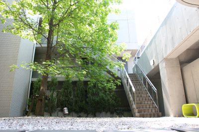 学芸大学駅の賃貸:【光降り注ぐ陽だまりシャトー】